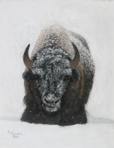 Buffalo in Snow (pastel)